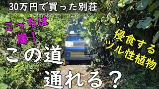 ポツンと一軒家 へ続く 一本道 、そこは ジャングル 。 車 が 傷だらけ になりました。
