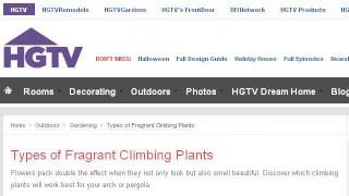 Outdoor Climbing Plants