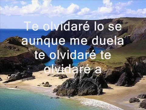 Te Olvidare - Duo Antología ♫ ♪ ╰♫╮