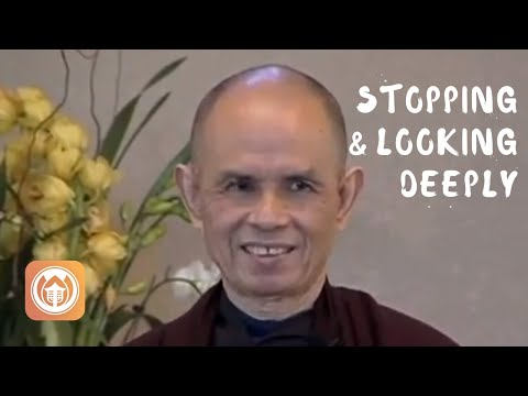 Stopping & Looking Deeply | Thich Nhat Hanh (short teaching video)