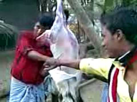 Goat Meat Cutting3gp