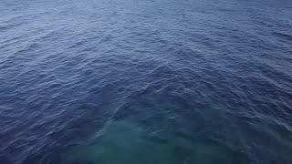 Aerial Shot Of The Sea Stock Video