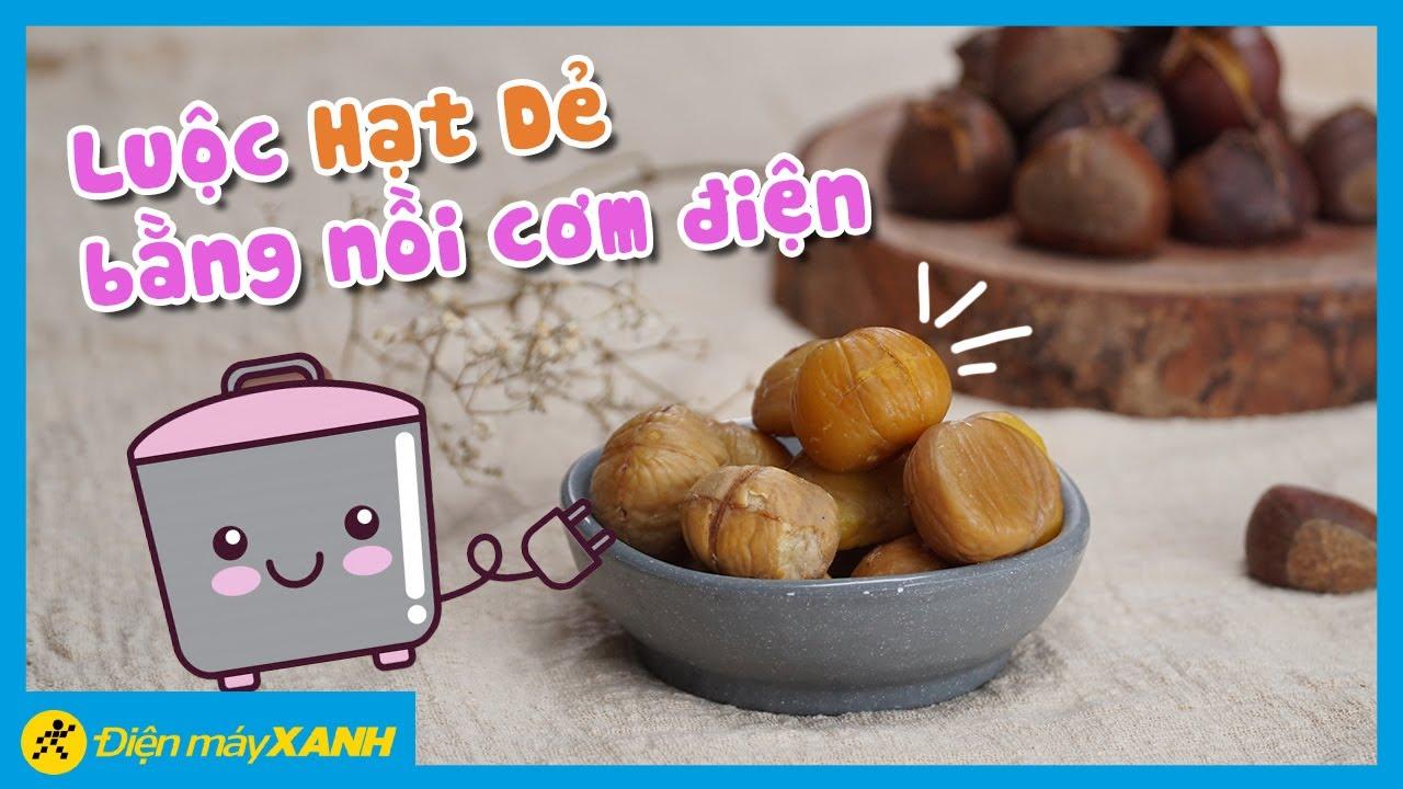 Cách luộc hạt dẻ bằng nồi cơm điện siêu dễ, ăn ngon lắm! • Vào bếp Điện máy XANH