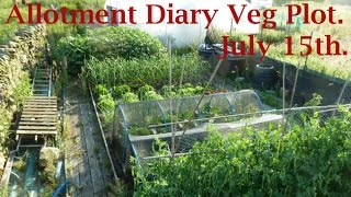 Allotment Diary Mid July Vegetable Plot, Greenhouse & Polytunnel Update & 1st Outdoor Potato Harvest