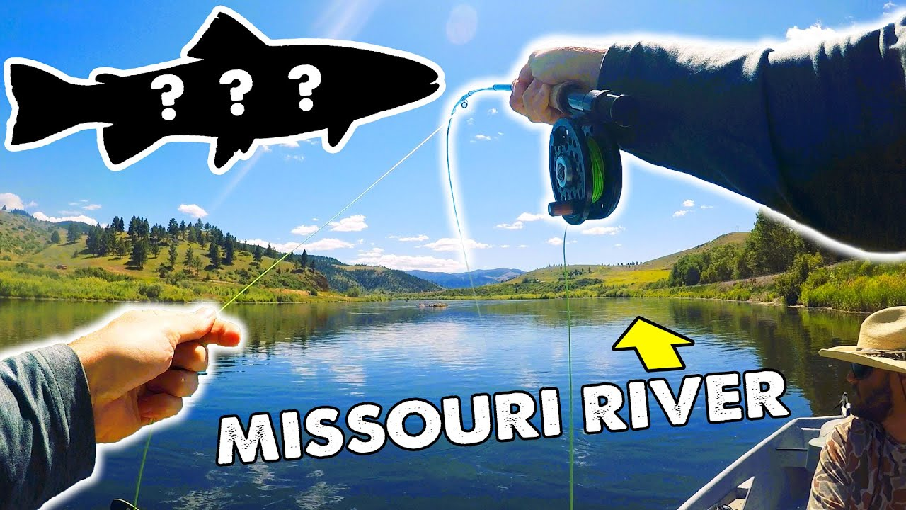 Catching HUGE Wild Trout on the Missouri River!!! (NEW PB!)