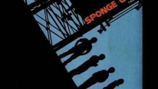 Neon - Spongecola