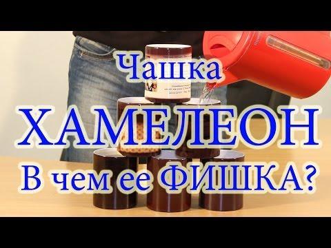 Чашка хамелеон  Магическая чашка с фото  Купить печать на чашках Киев