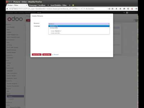 Odoo 8 - Website banner automatically and multilingual