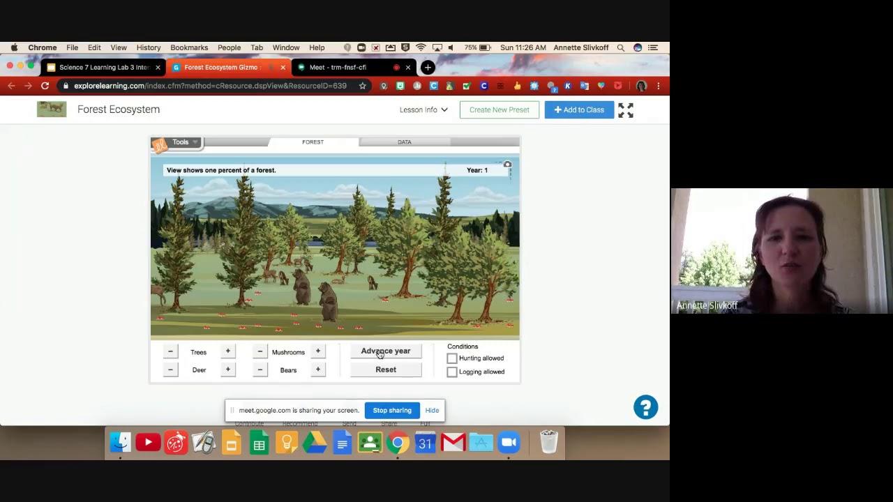 Forest Ecosystem Gizmo - YouTube