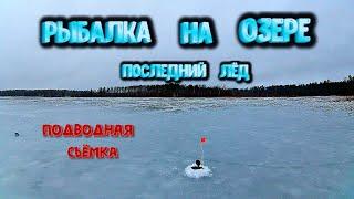 Рыбалка весной по последнему льду на озере Много рыбы под водой Подводная съёмка