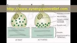 hqdefault - Neck And Back Pain Clinic Plainfield, Il
