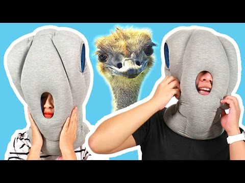 People Try The Ultimate Napping Pillow