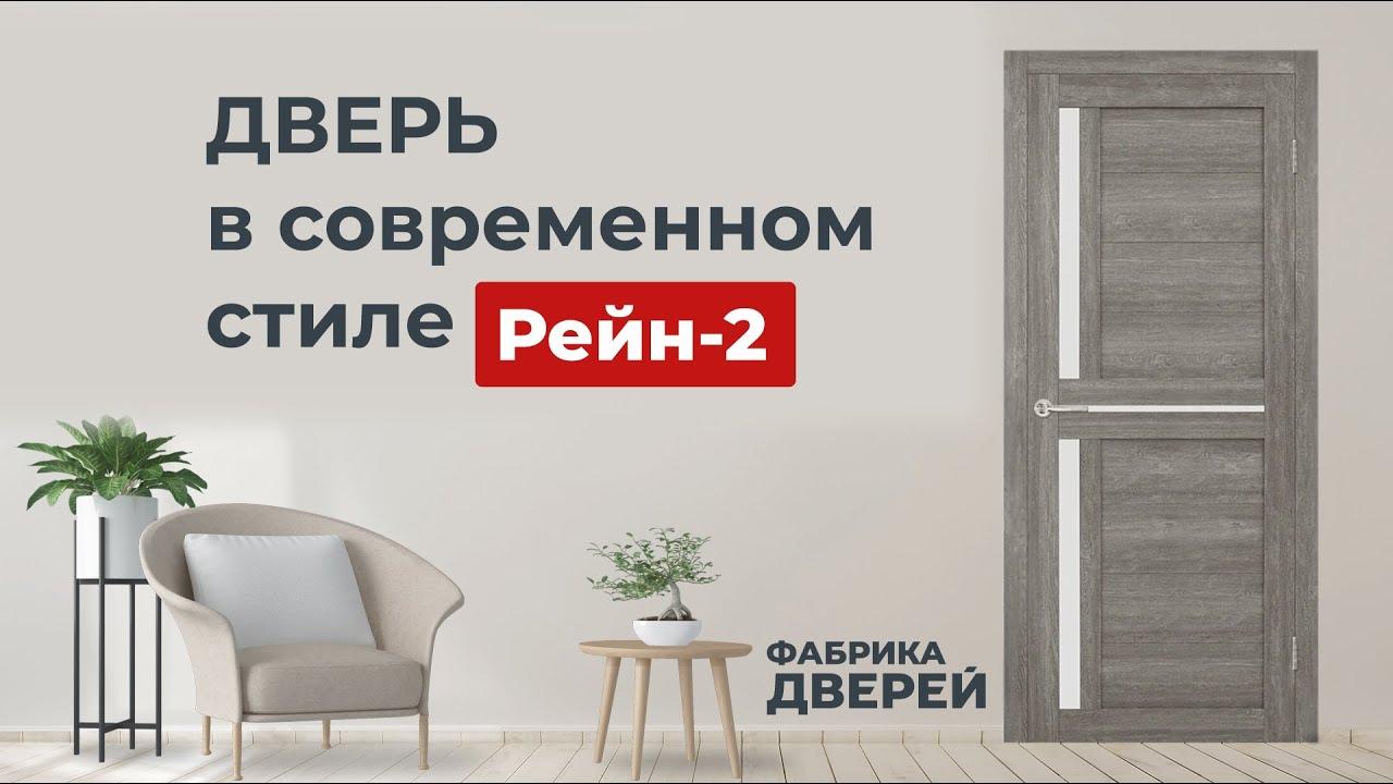 Дверь в современном стиле Рейн-2