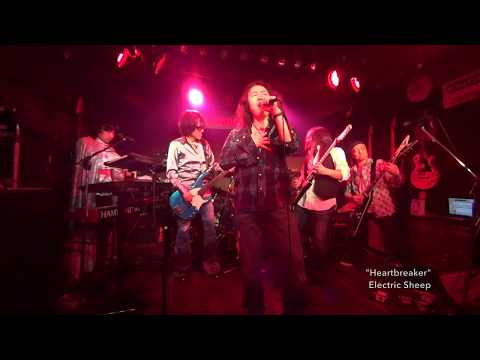 "Electric Sheep Live at Crawdaddy club ""Journey〜Heartbreaker"""