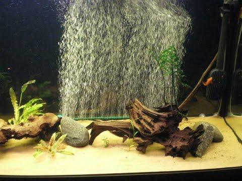 Аквариумный распылитель! Что точно не стоит покупать! Аэрация воды в аквариуме!