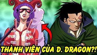 Quân Cách Mạng Của Dragon Gồm Có Những Ai trong One Piece?!