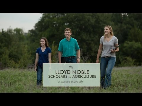 Lloyd Noble Scholars In Agriculture: Summer Internships