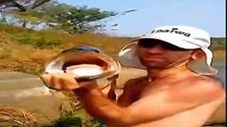 Beeg fish in Ballito