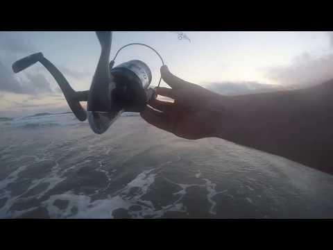 Wanderings Of A Worm Drowner - Shore Fishing Gower Peninsula 13-07-2017 (Ep 2)