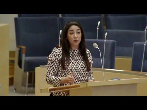 Debate in Swedish Parliament on Press Freedom in Turkey