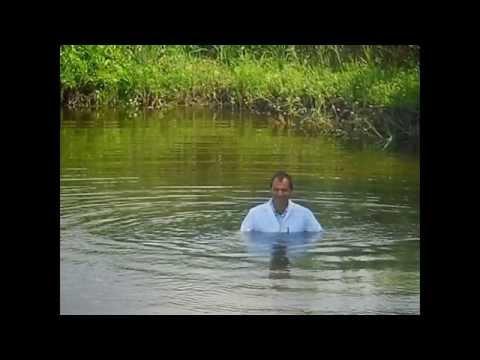 Wetlook in the pond 2014 06 15