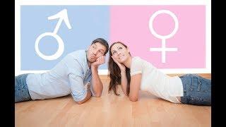По каким принципам работают мужчины и женщины