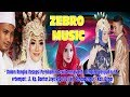 Live zebro music mp3