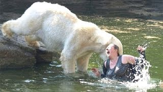 18+ Жуткие НАПАДЕНИЯ медведя на людей!!! Ужасная МОЩЬ!!! №2