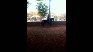 P - Matthew Heath Eventing.wmv