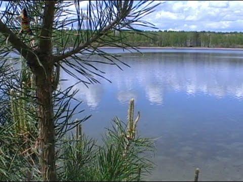 Пять озер в Омской области Загадочные места