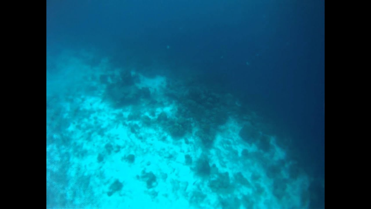 steep drop off in the waters of bonaire youtube