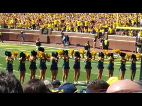 University of Michigan Student section 2016