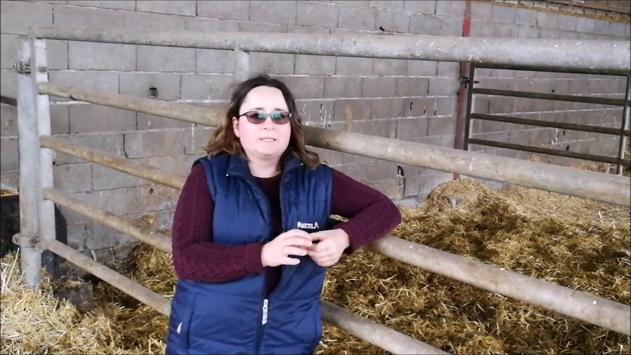 Série de vidéos sur l'agriculture au féminin