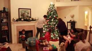 Decorating A Christmas Tree In 165 Seconds (2013)