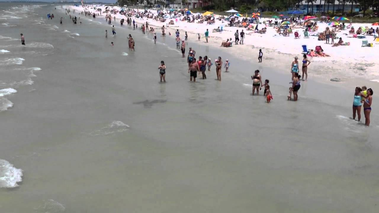 Fort myers beach stingrays youtube fort myers beach stingrays geenschuldenfo Gallery