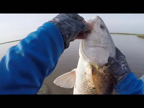 Fishing A Redfish Tournament From A Kayak - LSKS #1 2018