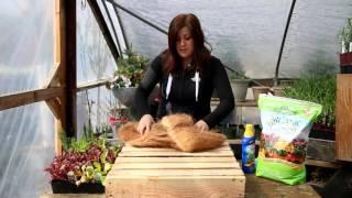 DIY Vegetable Pallet Planter from Garden Answer