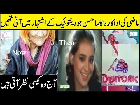 Neelma Hassan Pakistani Famous Actress Then and Now @Celebrities Gossip