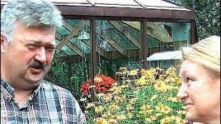 Выращивание цветов и овощей в горшках на улице