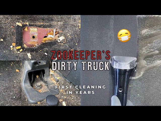 Deep Cleaning a Zookeeper's FILTHY Truck | Satisfying DISASTER Detail