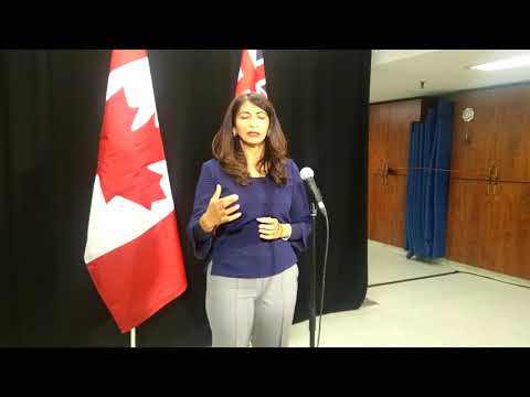 Seniors Affairs Minister Dipika Damerla addresses 'troubling' Mississauga nursing home