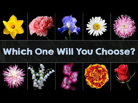 The Flower You Pick Will Reveal Your True Personality