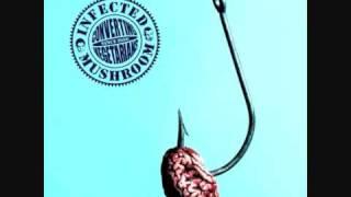 Infected Mushroom - Scorpion Frog