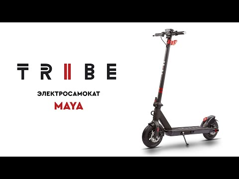 Обзор электросамоката TRIBE Maya