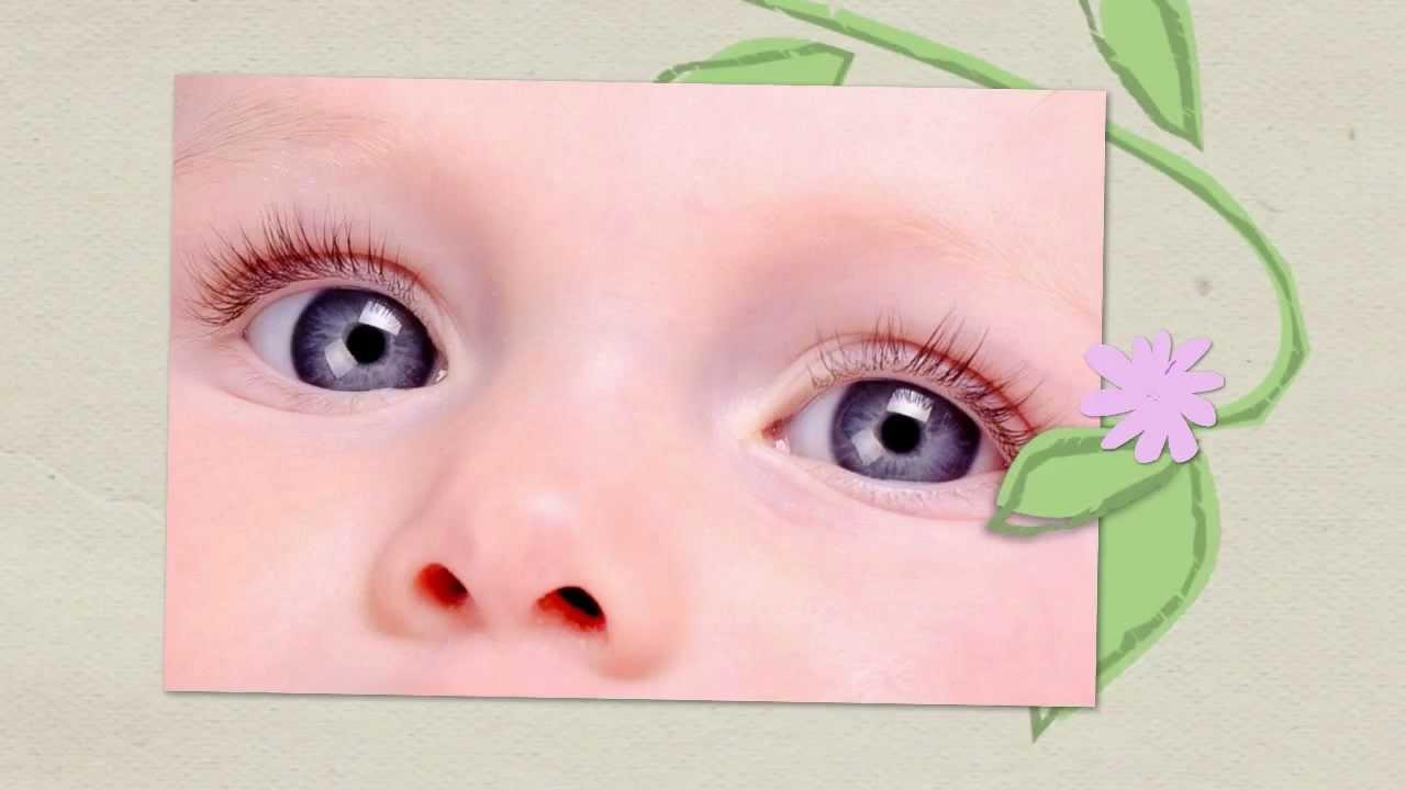 Alessia gli occhi pi belli foto di bambini youtube for Immagini di api per bambini