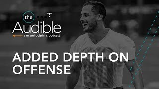 The Audible State of the Dolphins | Added depth on the roster