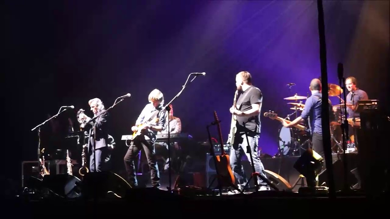 Dire Straits Experience 2019 Telegraph Road  Solo Final