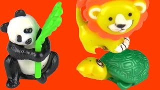 Tiger Panda Turtle Parrot Animals Surprise Toys
