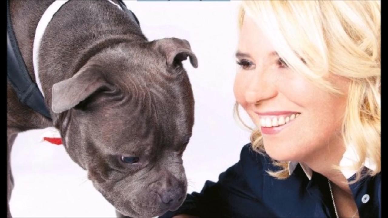 Cani Di Maria De Filippi Youtube
