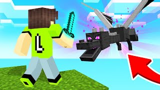 fighting the ender dragon in minecraft sky block